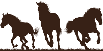 Galloping Horses in Silhouette